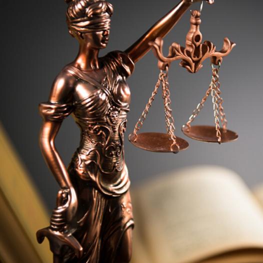 Especialidad en Derecho de Amparo