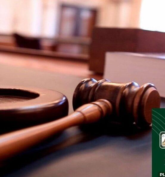 Juicios Orales en Materia Civil y Mercantil
