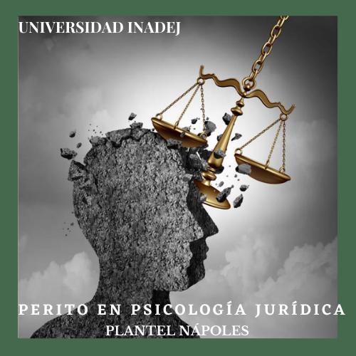 Perito en Psicología Jurídica